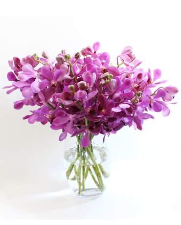 250 & Flower Vases
